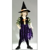 Fairy Tale Witch Toddler